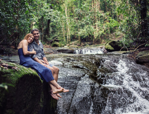 Buderim Falls In Love